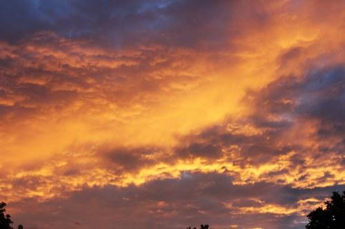 Summers Golden Sky Binghamton, NY